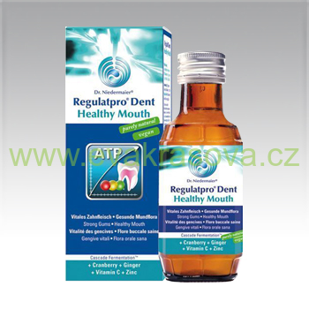 Dr. Niedermayer - Regulatpro Dent Healthy Mouth - 100 ml